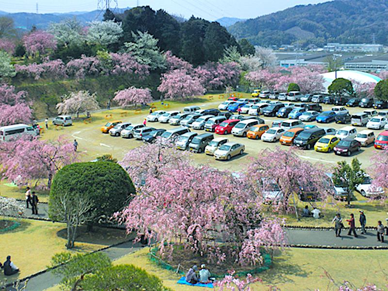 幸田文化公園(幸田文化広場)