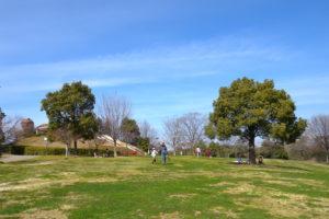 聚楽園公園(しあわせ村)