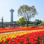 木曽三川公園センター 水と緑の館・展望タワー