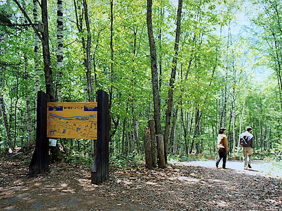 鍋平高原自然散策路
