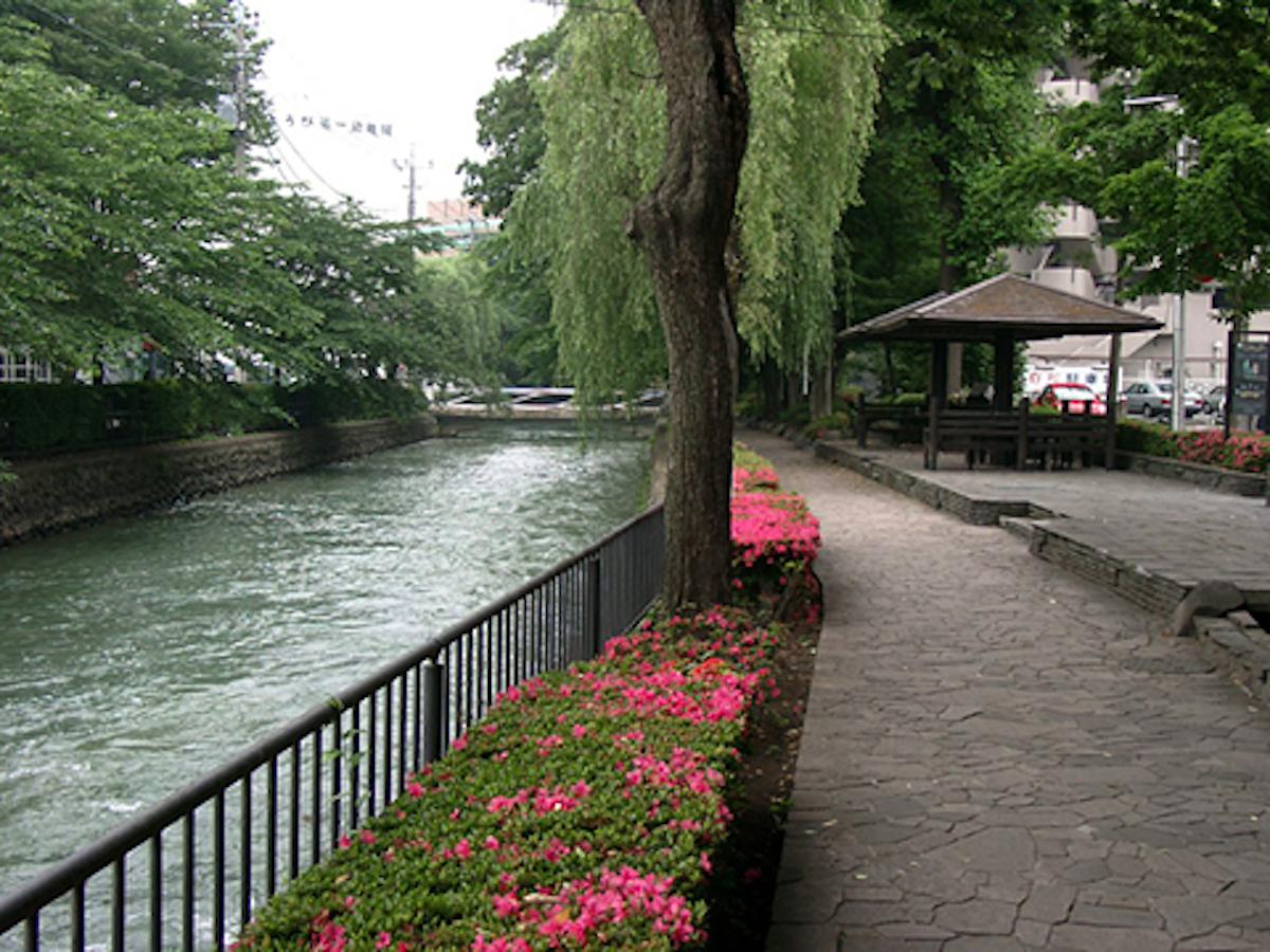 広瀬川河畔緑地