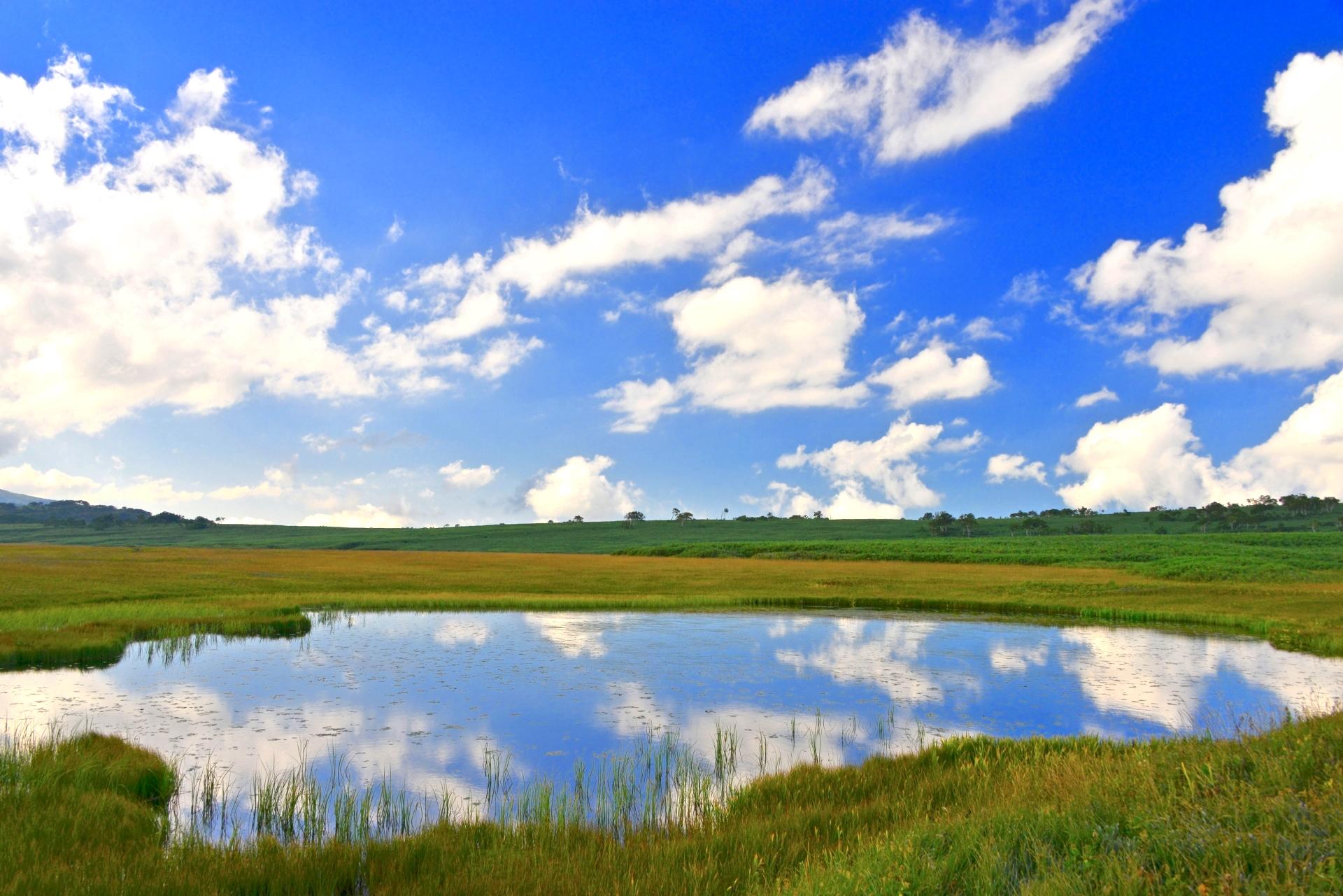 雨竜沼湿原