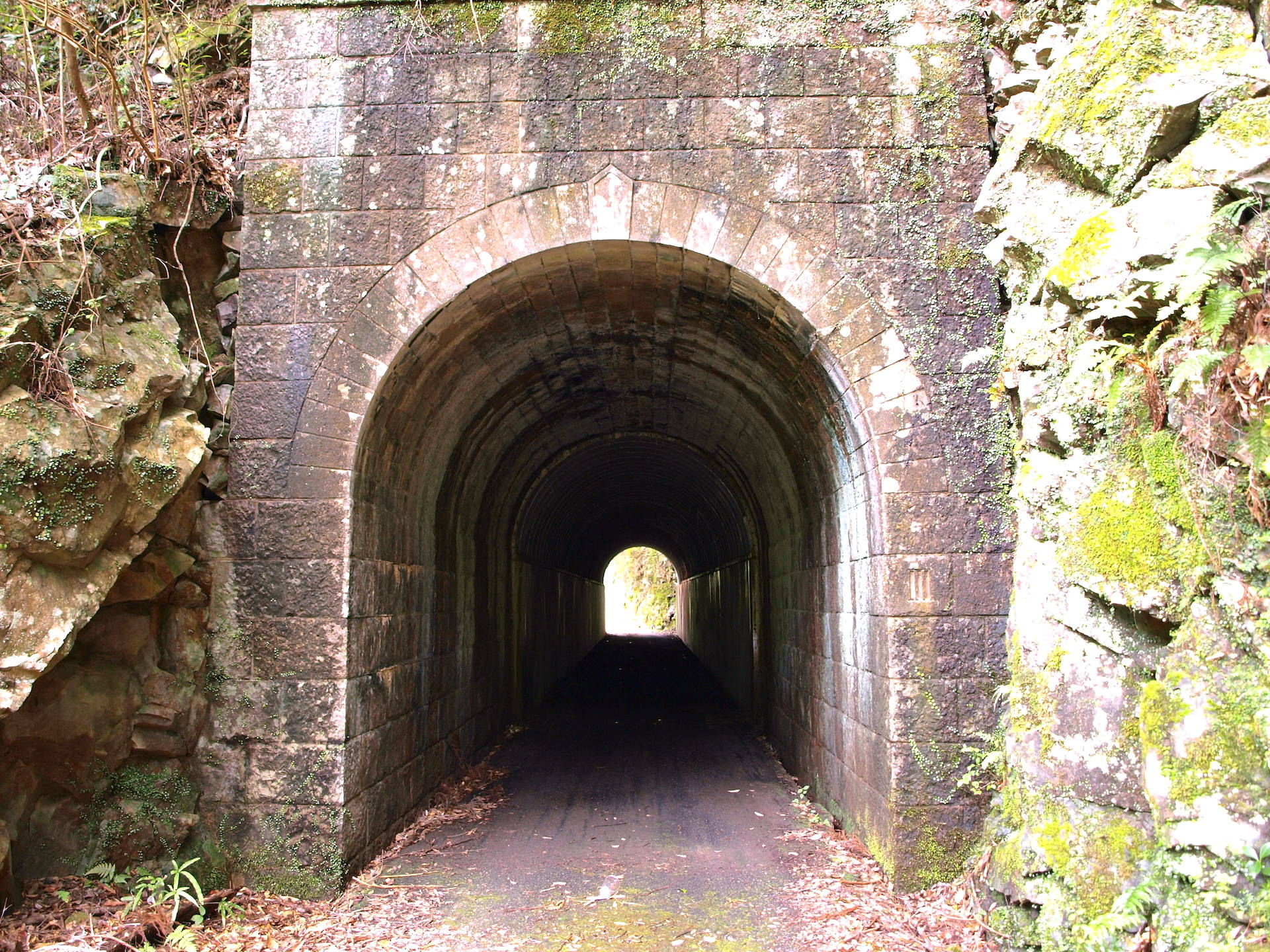 旧魚梁瀬森林鉄道施設・オオムカエ隧道