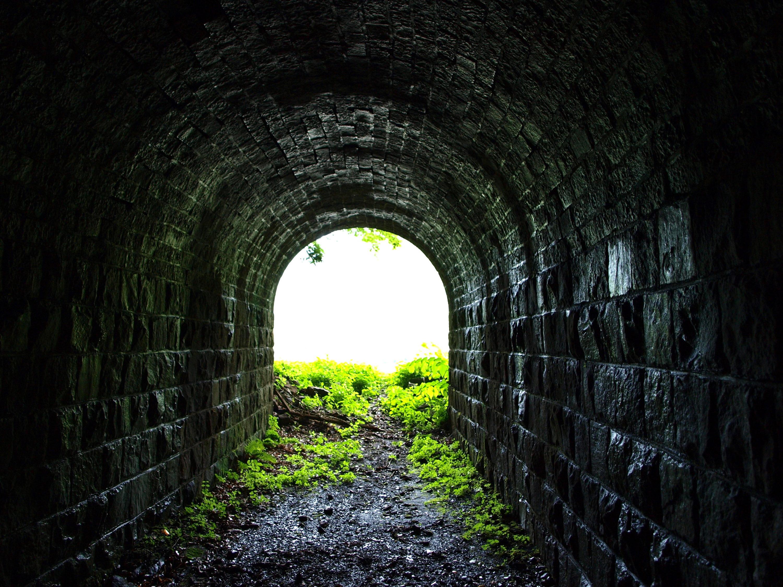 旧魚梁瀬森林鉄道施設・平瀬隧道