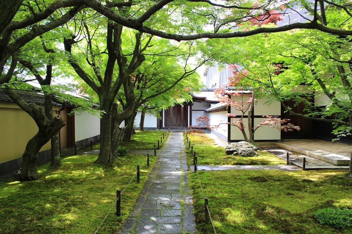大徳寺・黄梅院