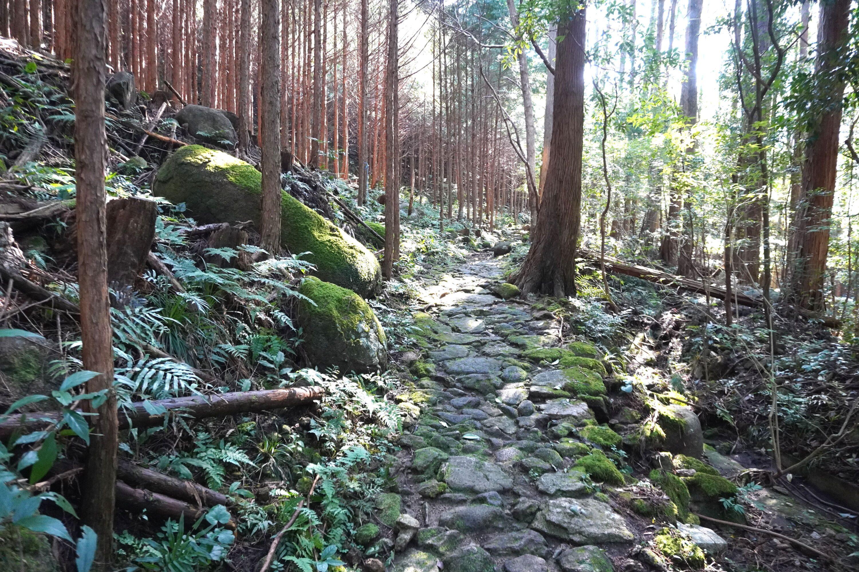 熊野古道伊勢路 八鬼山越え