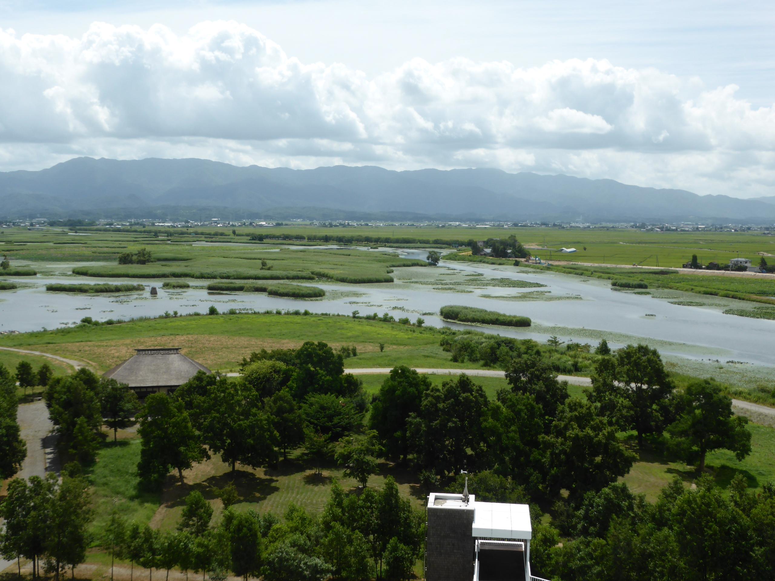 福島潟(水の公園福島潟)