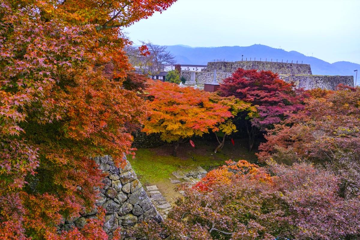 津山城(鶴山公園)