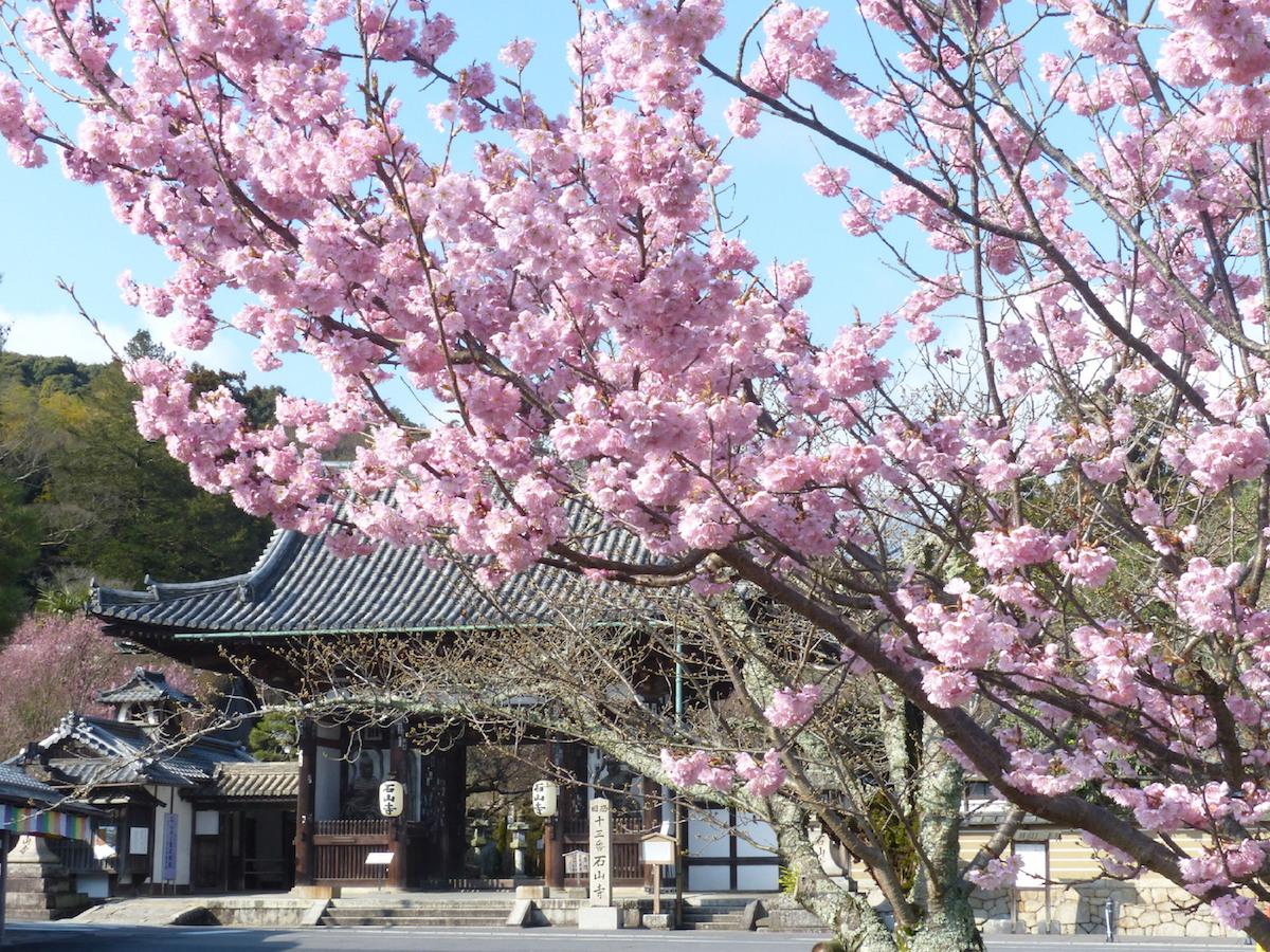 石山寺・東大門