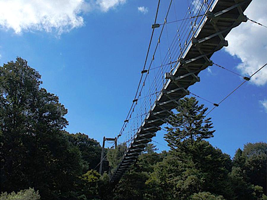 保良の宮橋