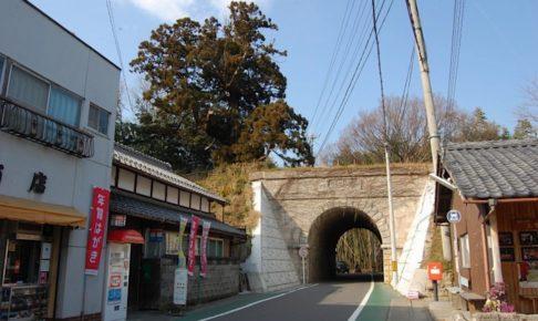 大沙川隧道・弘法杉