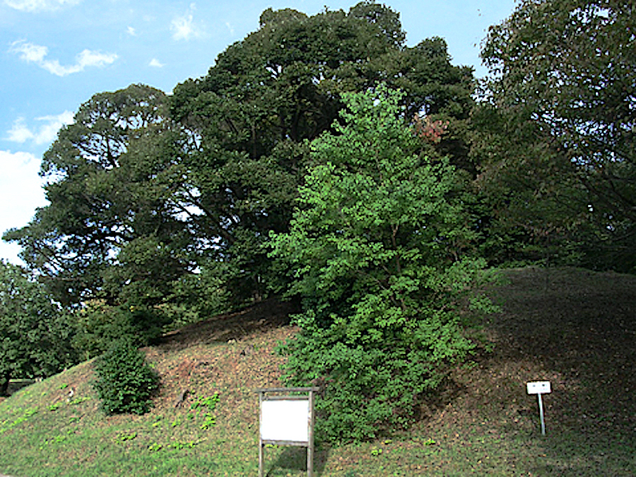 島根県立八雲立つ風土記の丘・岡田山2号墳