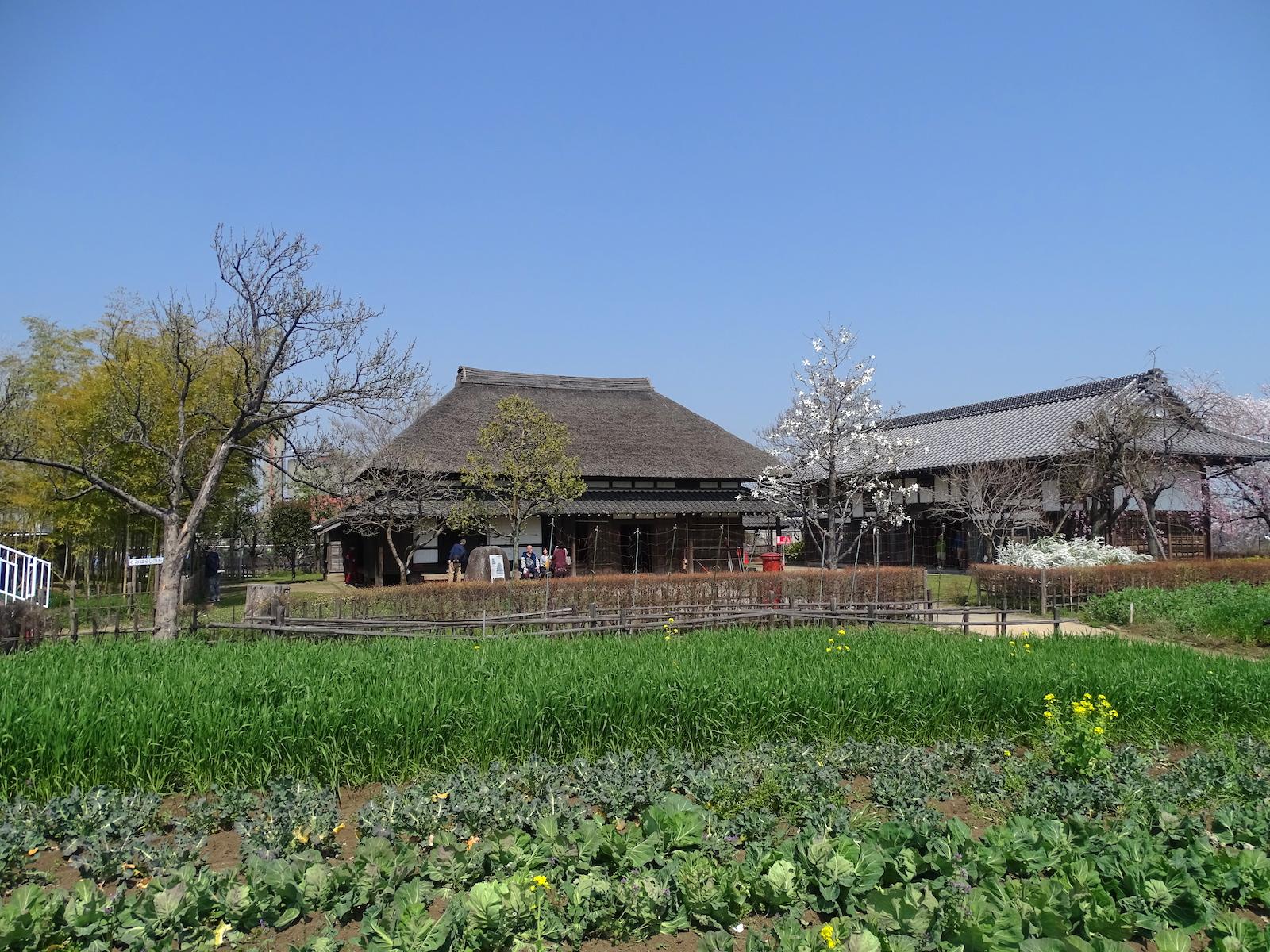 都市農業公園