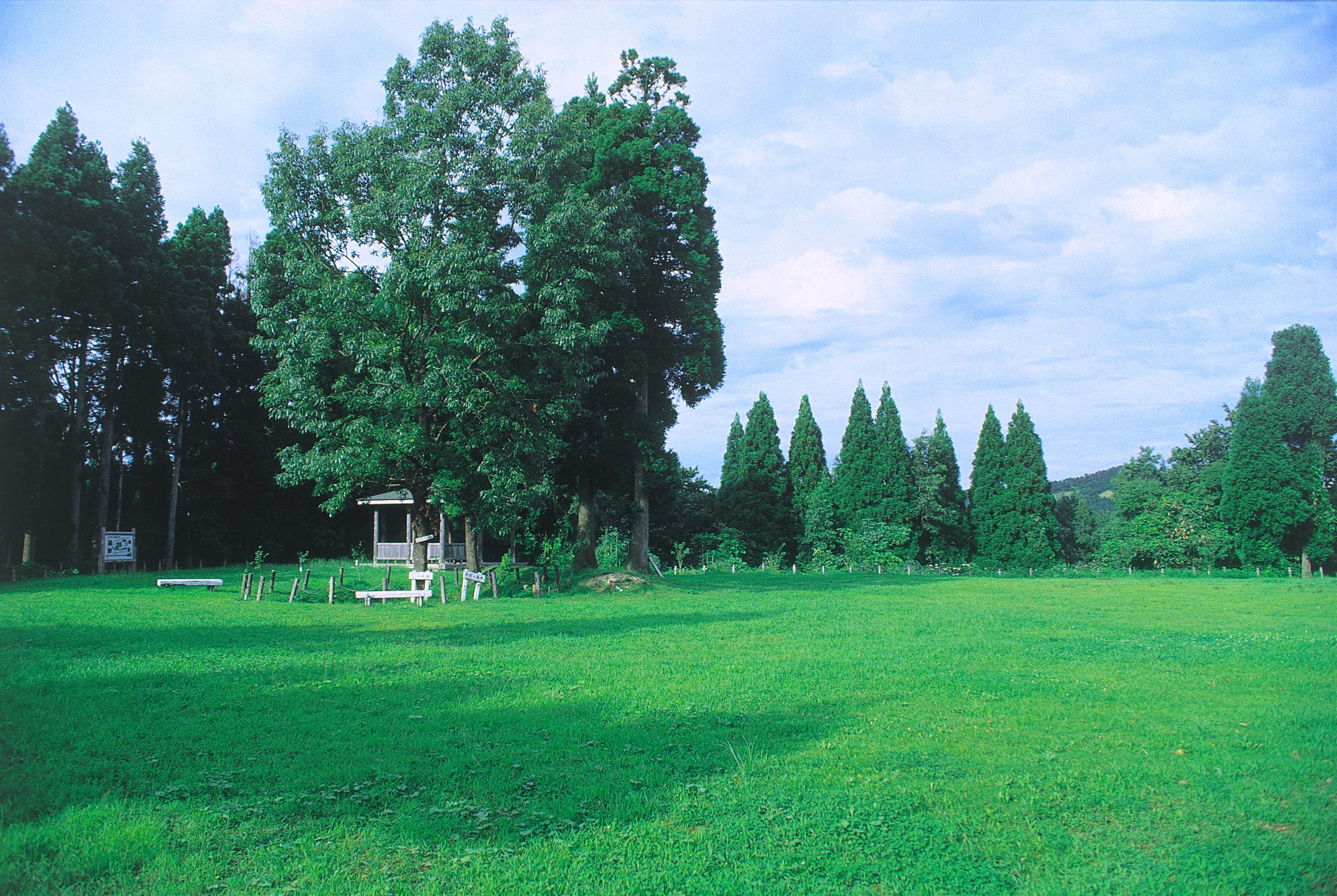 森寺城(湯山城)