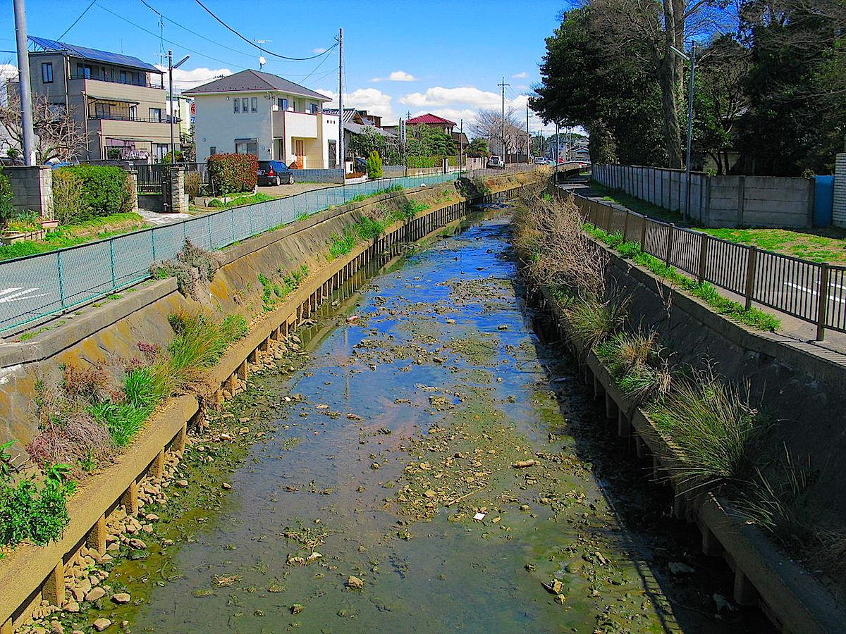 江戸湾に流れ出たかつての利根川は会の川として現存