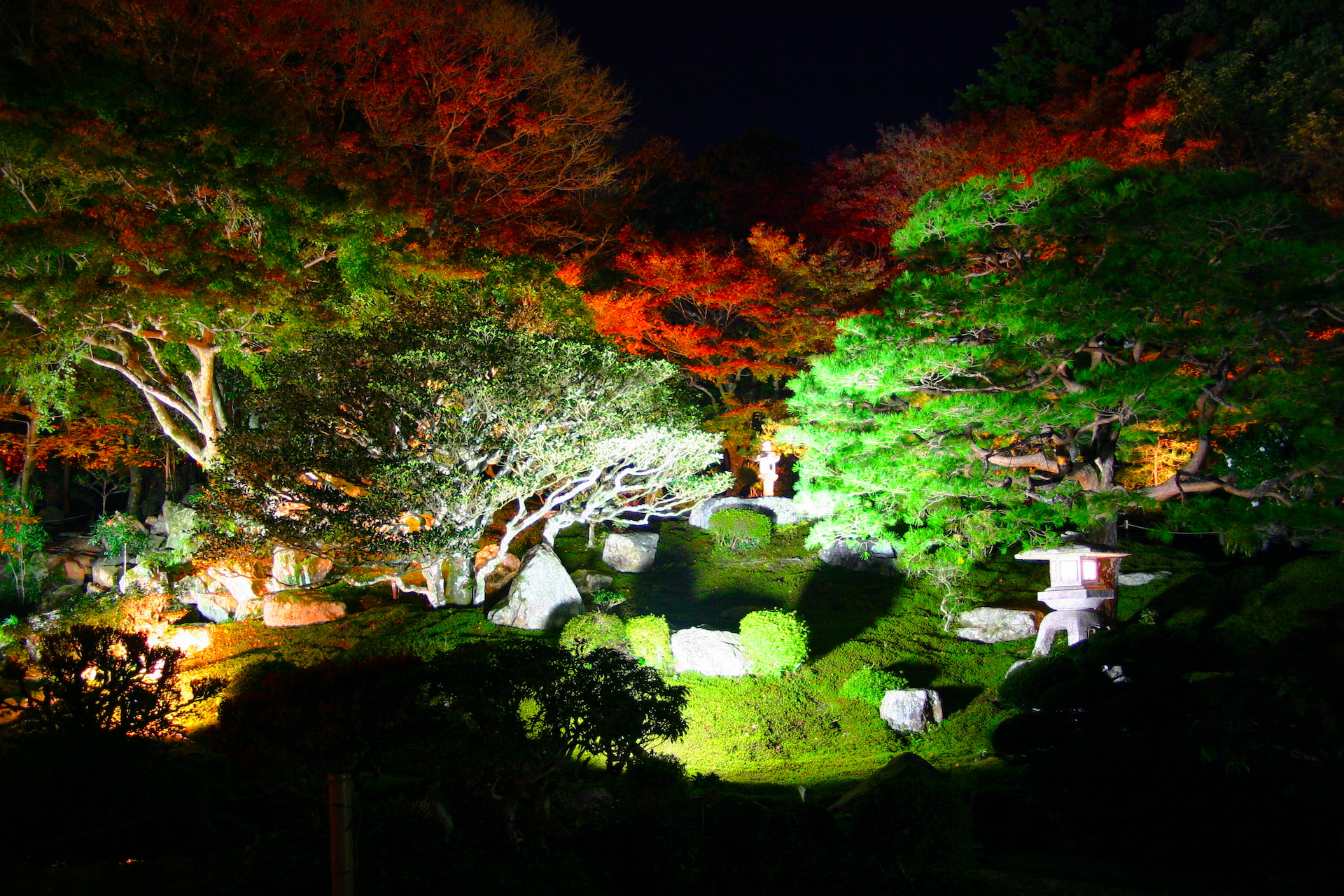 旧竹林院『紅葉ライトアップ』