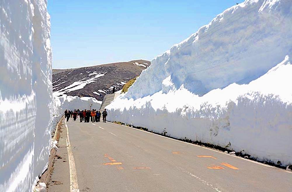 志賀草津高原ルート 雪の回廊ウォーキング