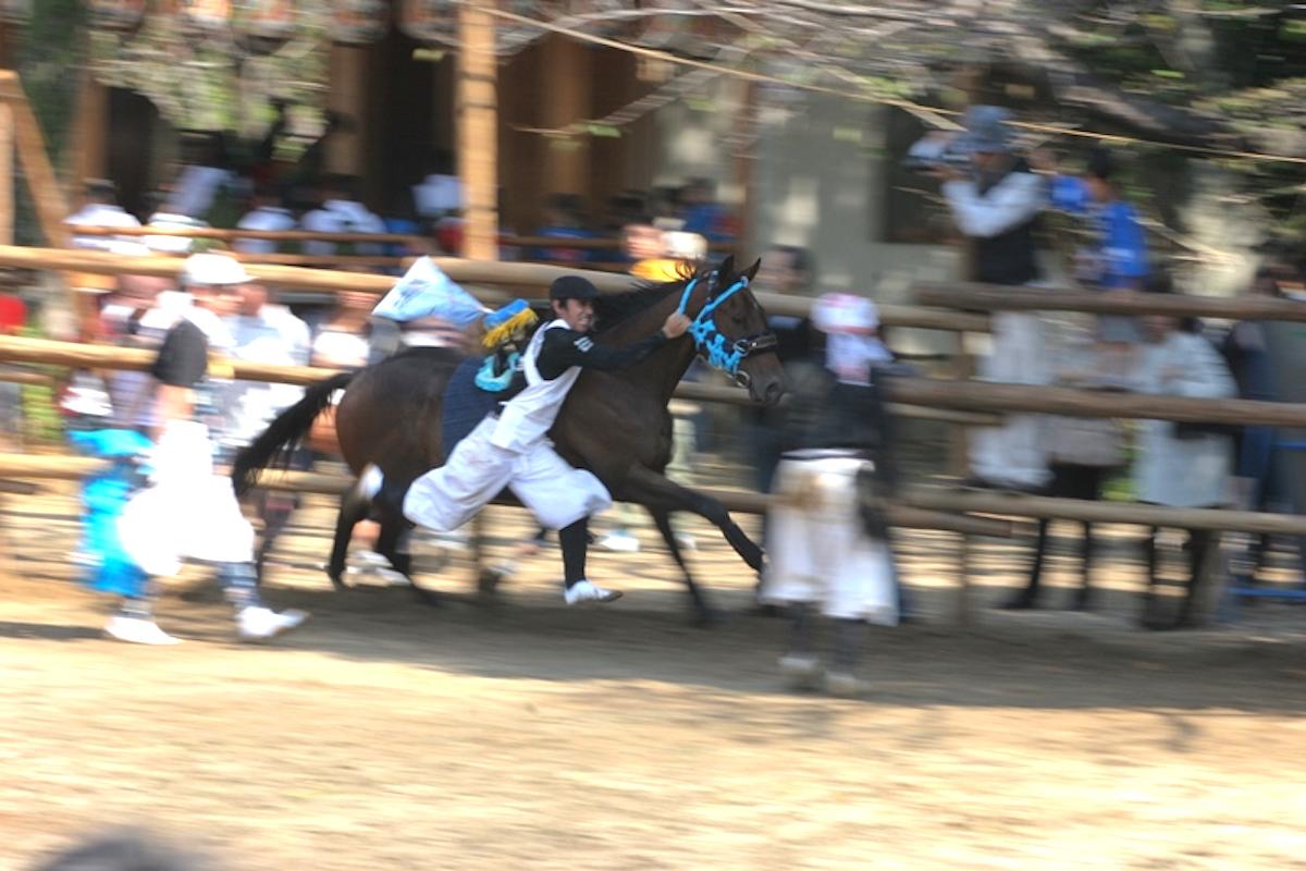ことば 由来 する 乗馬 に 馬が由来となった言葉