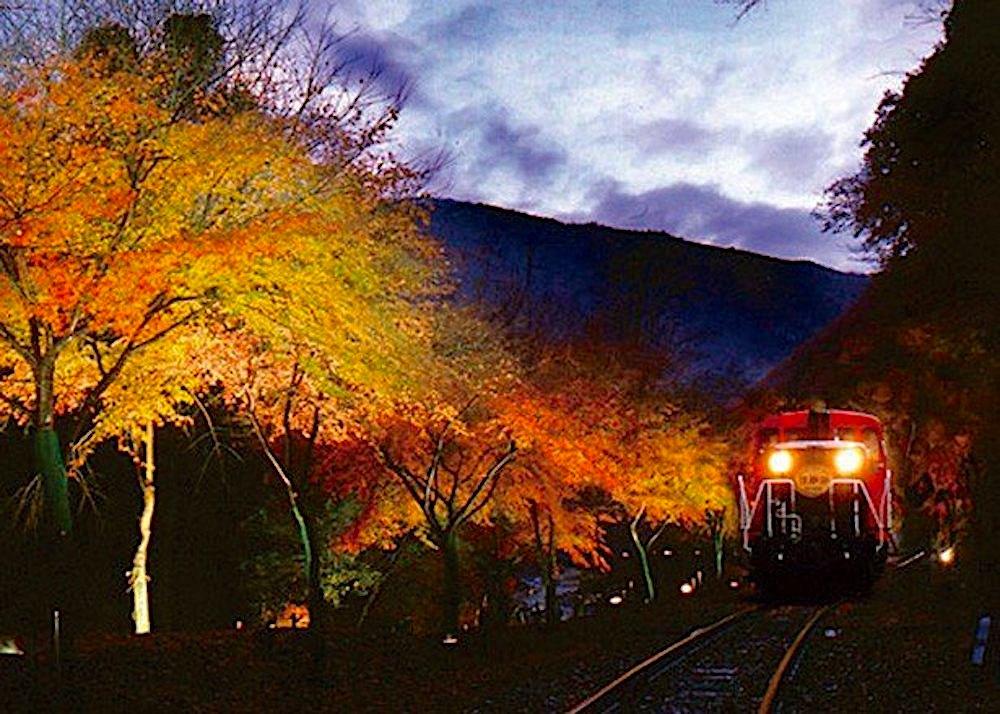嵯峨野トロッコ列車『秋のライトアップ』