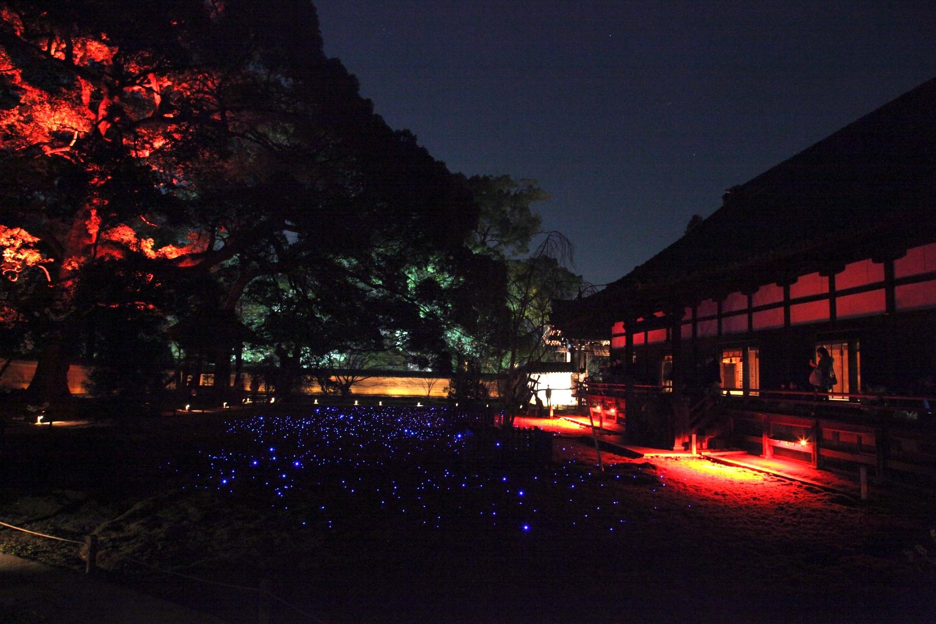 青蓮院門跡『夜間の特別拝観・春』