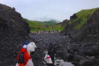 【達人のおすすめ】知床岬に上陸してビーチクリーン