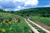 八幡平 黒谷地湿原