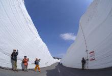 八甲田十和田ゴールドライン開通/雪の回廊